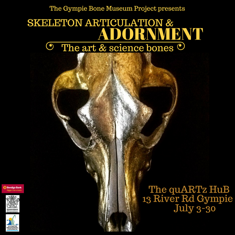 skeleton articulation and adornment the art of science and bones at gympie bone musem