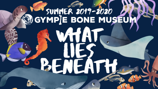 what lies beneath summer 2019-2020 exhibition at gympie bone museum