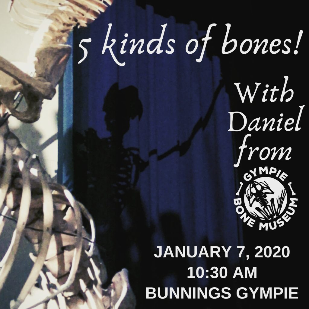 5 Kinds Of Bones at Gympie Bunnings 7 January 2020