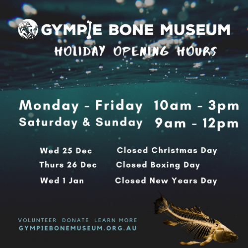 School holiday opening hours summer 2019-2020 at Gympie bone museum