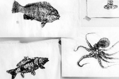gyotaku prints