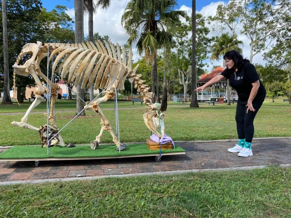 Director Rae Gate helps move the buffalo skeleton across the park
