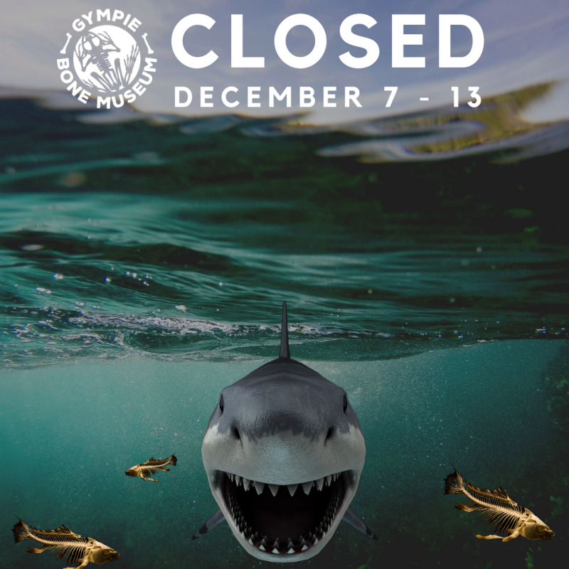 gympie bone museum closed 7 december 2019 to 13 december 2019